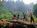 Trekking por Tailandia y Phuket