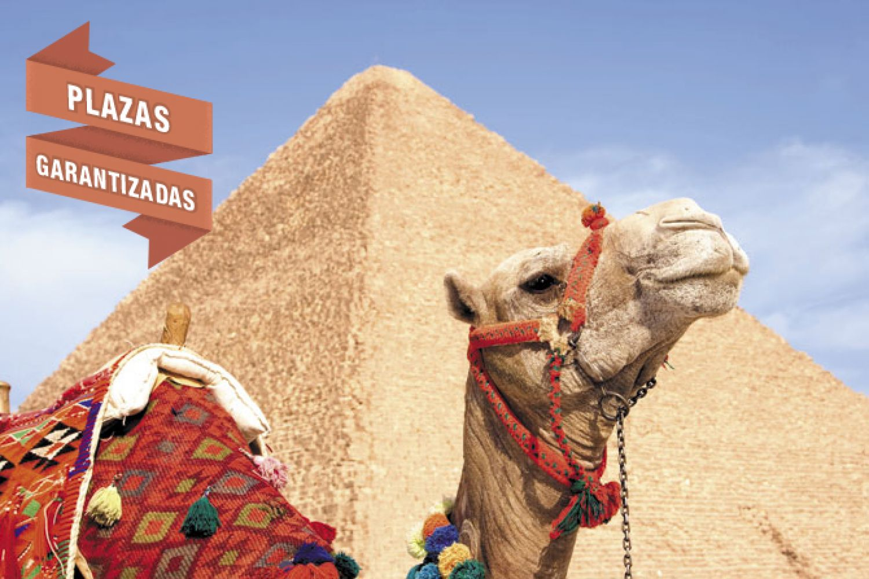 INTERLINE EGIPTO - Gamil 11 días con Mar Rojo - Plazas garantizadas