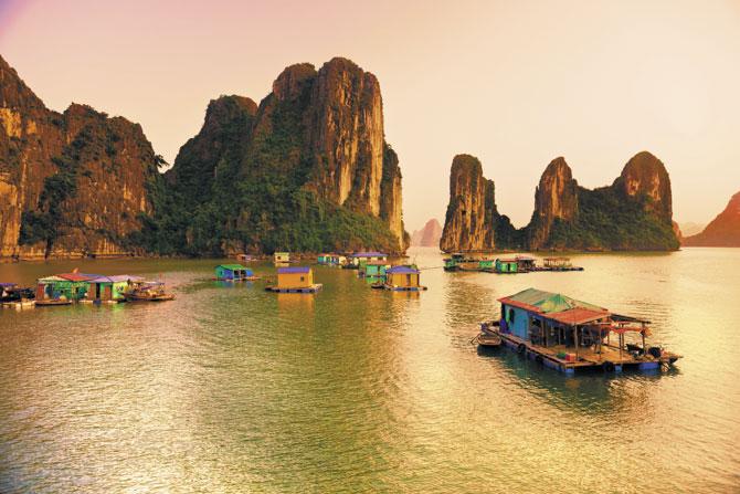 Vietnam Clásico -1
