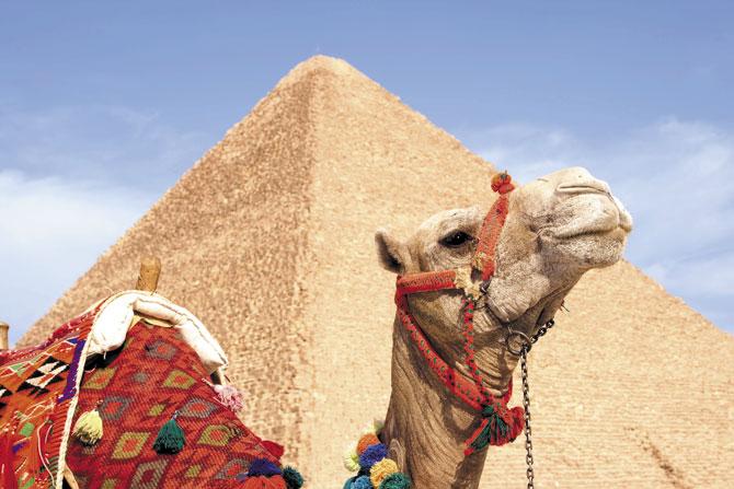 Maya Sharm 15 días